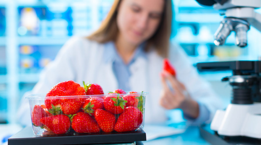 A lady checking strawberries