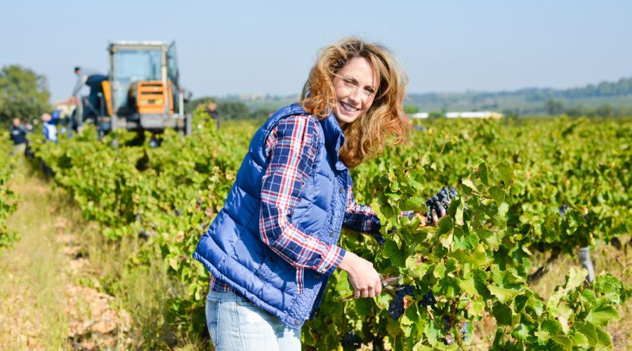 lady in a farmland