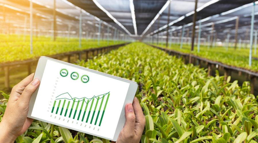 Multinationals agriculture